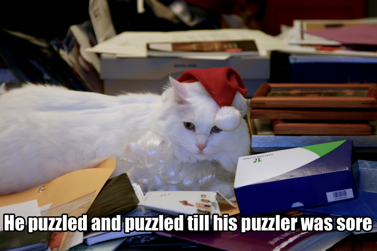 He puzzled and puzzled till his puzzler was sore